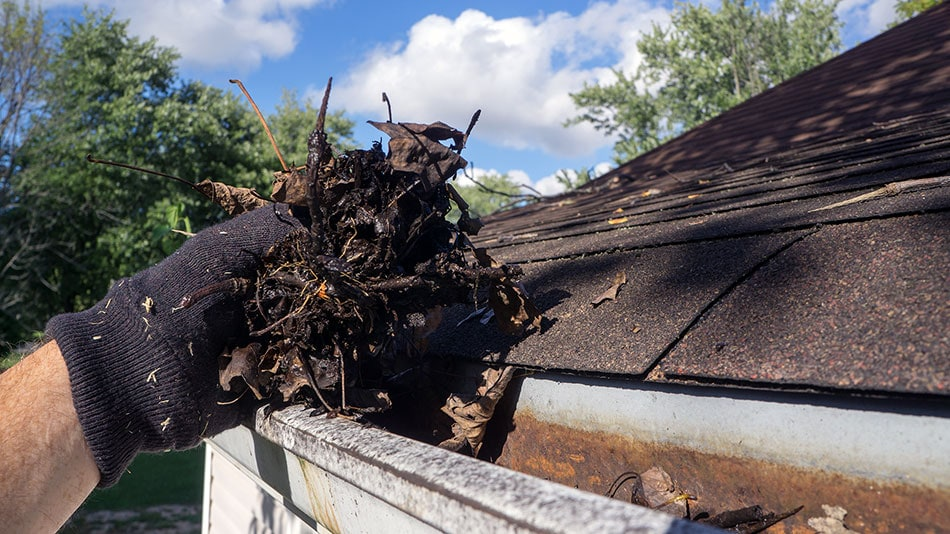 cleaning out gutter to prevent basement flooding